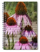 Cones In Craquelure Spiral Notebook