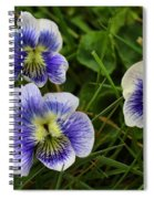 Confederate Violets Spiral Notebook