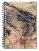 Conflicted Spiral Notebook
