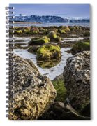 Conglomerate Boulders, Green Point, Nl Spiral Notebook