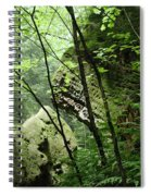 Conkle's Hollow Stone Arch Spiral Notebook