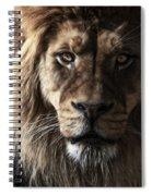 Conquistador Spiral Notebook
