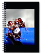 Consider The Ants 2 Of 3 Spiral Notebook