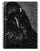 Conspiracy In The Snow Spiral Notebook