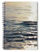 Contemplation 2 Spiral Notebook