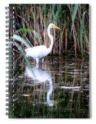 Content Egret  Spiral Notebook