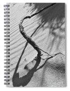 Continuazione Spiral Notebook