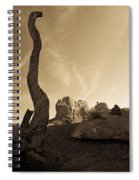 Contrails And Driftwood Spiral Notebook