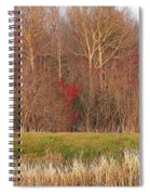 Contrasting Colors Spiral Notebook