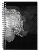 Contrasts In Floral Kingdom In Black And White. Spiral Notebook
