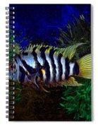 Convict Cichlid Fish Spiral Notebook