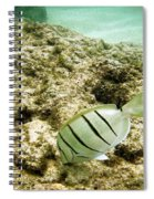 Convict Tang Spiral Notebook