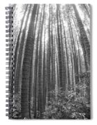 Cook Pines Spiral Notebook