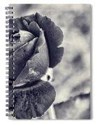 Cool Black Rose Spiral Notebook
