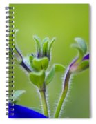 Cool Blue Fuzzy Feeling Spiral Notebook