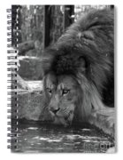 Cool Drink Of Water  Black And White  T O C Spiral Notebook