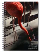 Cool Drink Of Water Spiral Notebook