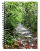 Cool Green Stream Spiral Notebook