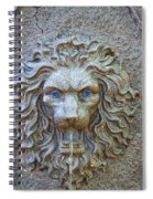 Cool Sip Of Water Spiral Notebook