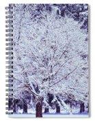 Cool Sunset Essence Of Winter Spiral Notebook