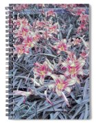 Cool Sunset Field Of Tiger Lillies Spiral Notebook