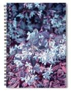 Cool Sunset Jasmine In Bloom Spiral Notebook