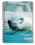 Cooling Off Spiral Notebook