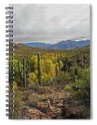 Coon Creek Looking South Spiral Notebook