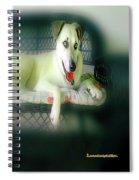 Cooper Goes Cuter Artwork 9  Spiral Notebook