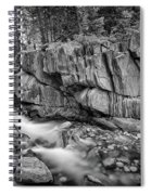 Coos Canyon Black And White Spiral Notebook
