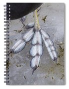 Coot Foot Spiral Notebook
