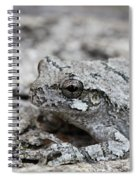 Cope's Gray Tree Frog #5 Spiral Notebook
