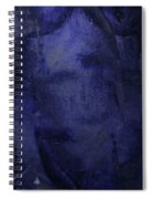 Copious Blue Spiral Notebook
