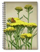 Copper On Yellow - Butterfly - Vignette 2 Spiral Notebook
