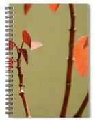 Copper Plant 2 Spiral Notebook