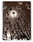 Coppertone Palms Spiral Notebook