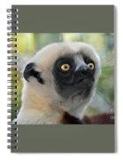 Coquerel's Sifaka Lemur Spiral Notebook