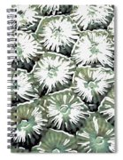 Coral Close Up  Spiral Notebook