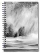 Coral Cove Park 0598 Spiral Notebook