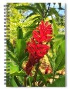 Coral Flower Spiral Notebook