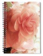 Peach Petals Glow Spiral Notebook
