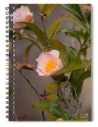 Coral Camellia Spiral Notebook