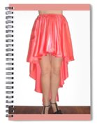 Coral Pink Satin High Low Skirt With High Slit. Ameynra Simple Line Spiral Notebook