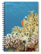 Coral Reef Eco System Spiral Notebook