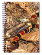 Coral Snake Snack Spiral Notebook
