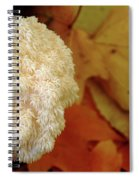 Coral Tooth Spiral Notebook