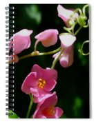 Coral Vine Flower Spiral Notebook