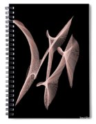 Choreography Of Feathers Spiral Notebook