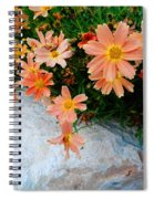 Coreopsis Sienna Sunset Spiral Notebook