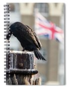 Cormorant Adult Phalacrocorax Carbo Spiral Notebook